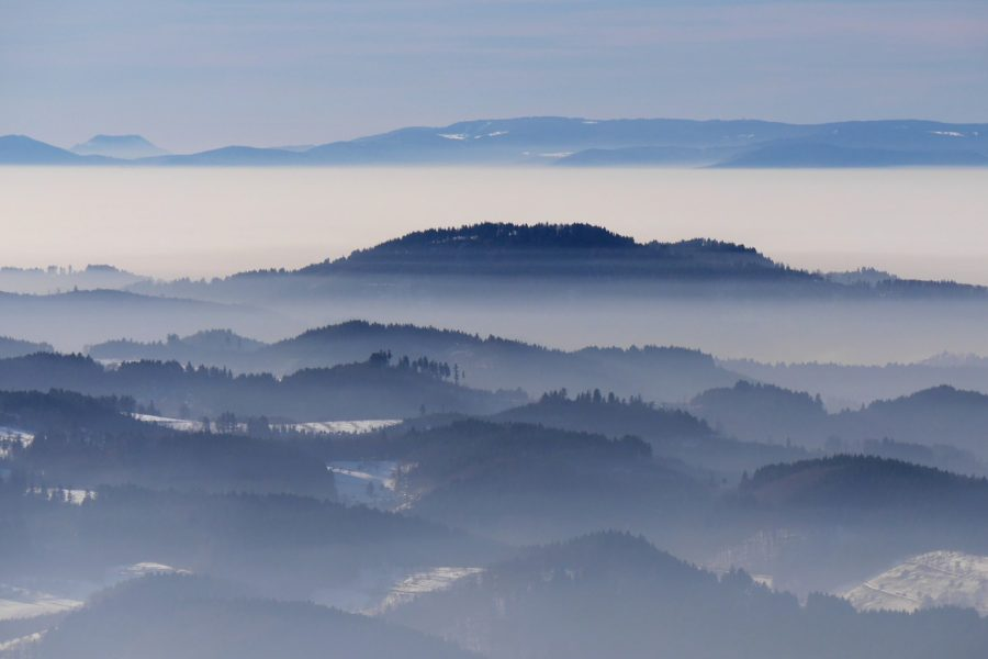 Schwarzwald Nebel